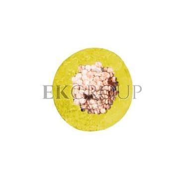 Przewód instalacyjny H07V-K (LgY) 2,5 żółty /100m/-145633