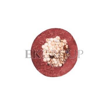Przewód instalacyjny H05V-K (LgY) 0,5 czerwony /100m/-145648
