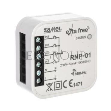 Nadajnik radiowy dopuszkowy RNP-01 EXF10000034-168799