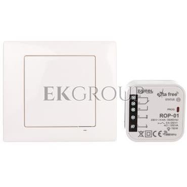 Zestaw sterowania bezprzewodowego (RNK02 ROP01) RZB-01 EXF10000069-174776