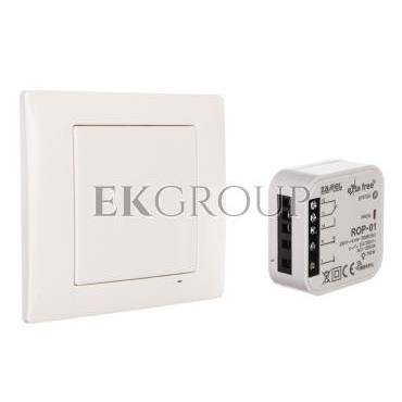Zestaw sterowania bezprzewodowego (RNK02 ROP01) RZB-01 EXF10000069-174777