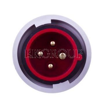 Wtyczka przenośna 16A 4P 400V czerwona IP67 SHARK 0142-6-174102
