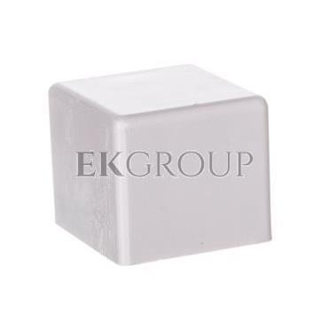Element kończący do kanałów kablowych TT 15x17 biały /2szt/ ECTT1517B-178576