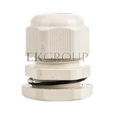 Dławnica kablowa PG21 bezhalogenowa dla kabla 13-18mm PG-21 89059002-176014