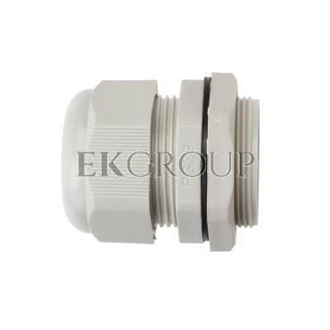 Dławnica kablowa poliamidowa PG29 IP68 DP 29/H szara E03DK-01030100701-175203