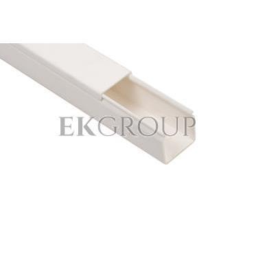 Kanał instalacyjny 25x25 WDK25025RW biały 6191053 /2m/-176135