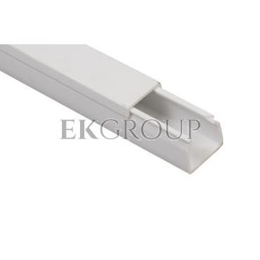 Listwa elektroinstalacyjna LS 17x15 EKO biała 68001 /2m/-176149