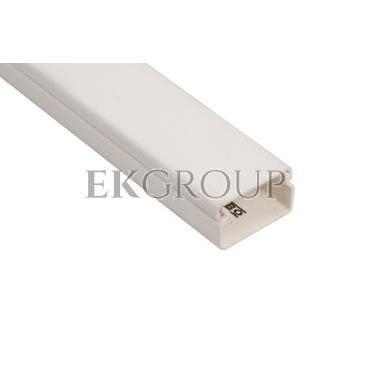 Kanał instalacyjny 30x15 WDK15030RW biały 6191010 /2m/-176154