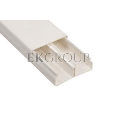 Kanał instalacyjny z przegrodą 50x20 WDK-N20050RW biały 6168744 /2m/-176156
