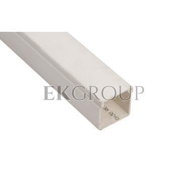 Kanał instalacyjny 30x30 WDK30030RW biały 6191096 /2m/-176160