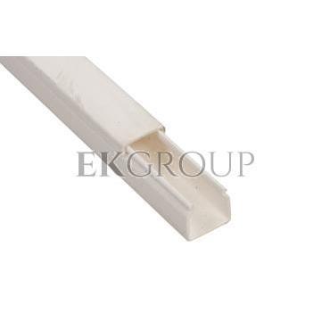 Kanał instalacyjny 20x20 WDK20020RW biały 6191037 /2m/-176167