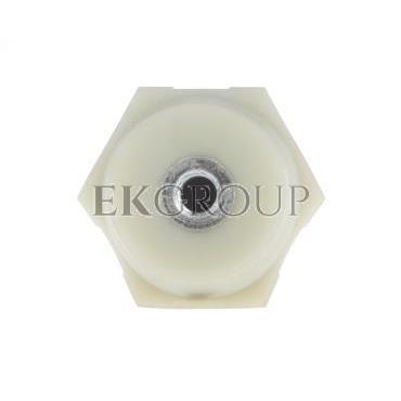 Izolator do mocowania szyn IWP 100/M12 R32RZ-06020101701-183017
