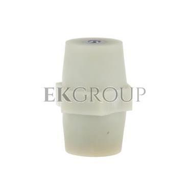 Izolator do mocowania szyn IWP 100/M12 R32RZ-06020101701-183018