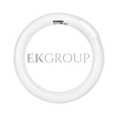 Świetlówka kołowa G10q Fc22/830 T9 Circline Plus 0001960-187784