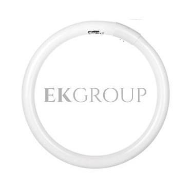 Świetlówka kołowa G10q Fc32/840 T9 circline plus 0001964-187787