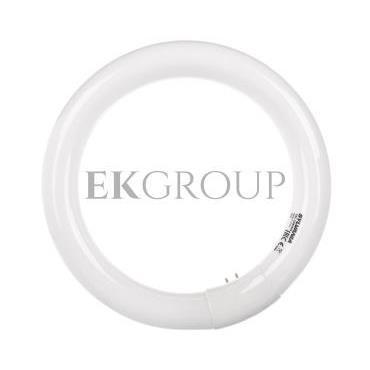 Świetlówka kołowa G10q Fc22/865 T9 circline plus 0001962-187785