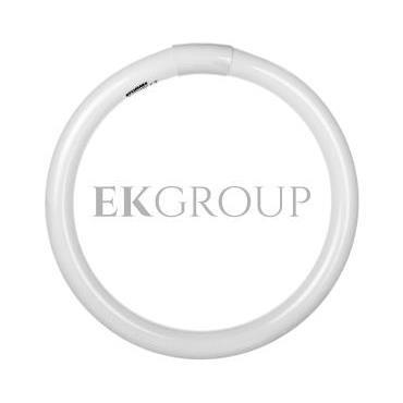 Świetlówka kołowa G10q Fc32/865 T9 circline plus 0001965-187788