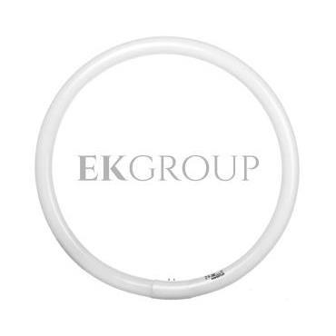 Świetlówka kołowa G10q Fc40/865 T9 circline plus 0001968-187790