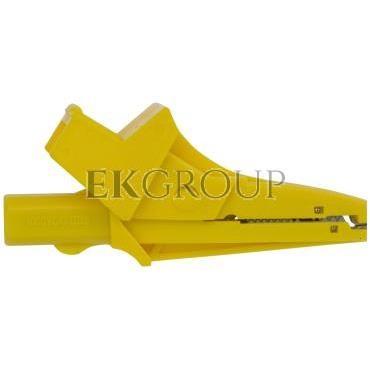 Krokodylek K02 żółty WAKROYE20K02-185028