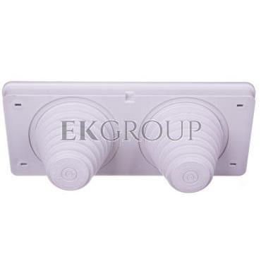 Płyta przepustowa 2 dla kabli 30-72 mm IP65 do ścianek 300mm Mi FP72 20001026-192765