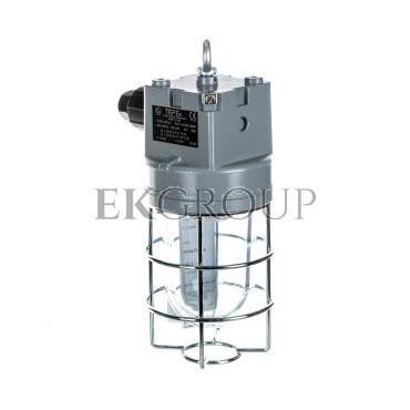 Oprawa przeciwwybuchowa LED PLFM 100/3 12W strefa 1,21 oraz 2,22 31-000-9221-204221