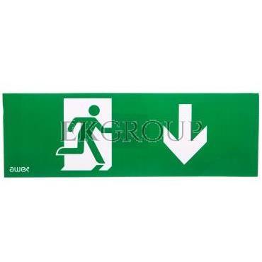 Piktogram 100x300 PM27 człowiek w drzwiach strzałka dół logo awex (ISO7010)-205732