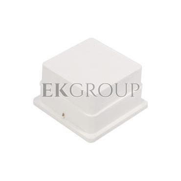 Skrzynka kontrolna do elewacji 140x140x100mm MAX 68.2 PL /96800208/-216301