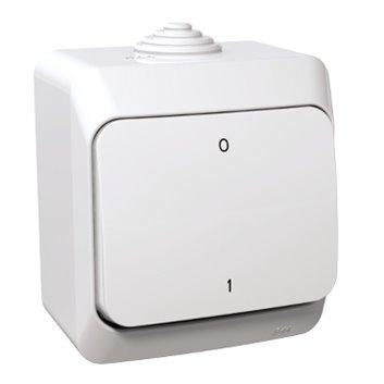Cedar Plus Łącznik dwubiegunowy natynkowy 16AX IP44 biały WDE000520