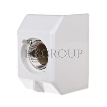 Gniazdo bezpiecznikowe tablicowe 1P DIII 63A 750-1200V UZ63/Z/750-1200V D8353869-90523