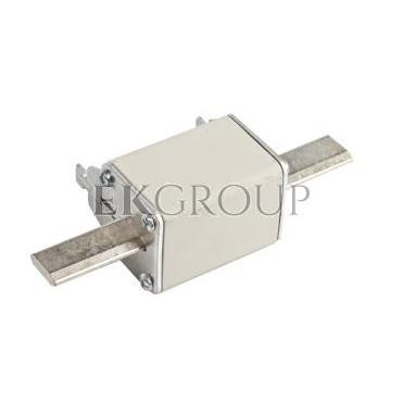 Wkładka bezpiecznikowa NH2C 100A gG 500V WT-2C 004114227-95713