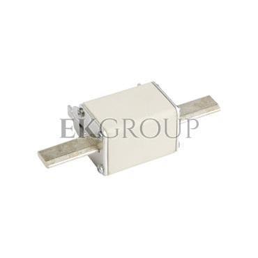 Wkładka bezpiecznikowa NH2C 160A gG 500V WT-2C 004114229-95717