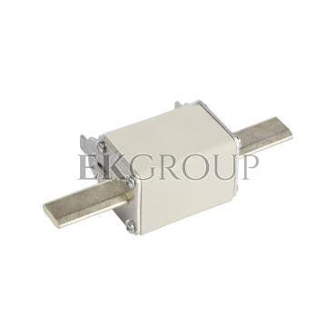 Wkładka bezpiecznikowa NH2C 250A gG 500V WT-2C 004114231-95720