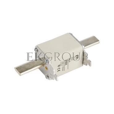 Wkładka bezpiecznikowa NH2C 250A gG 500V WT-2C 004114231-95721