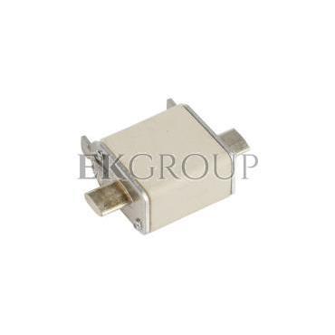 Wkładka bezpiecznikowa NH00 125A gG 500V WT-00 004111139-95746