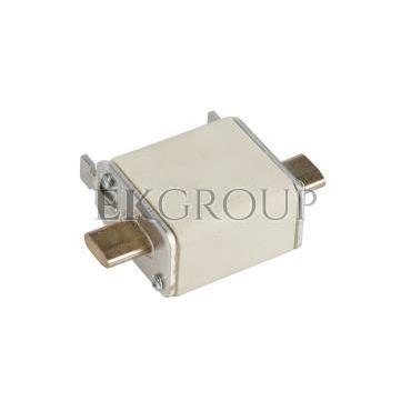 Wkładka bezpiecznikowa NH00 20A gF 500V WT-00 004114341-95755