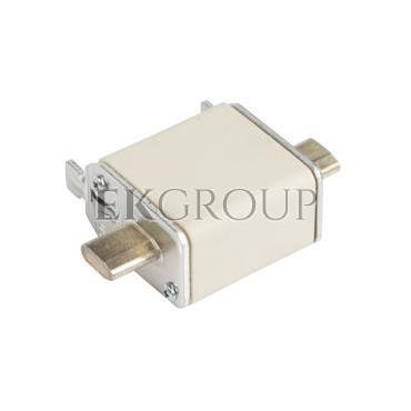Wkładka bezpiecznikowa NH00 32A gF 500V WT-00 004114334-95757