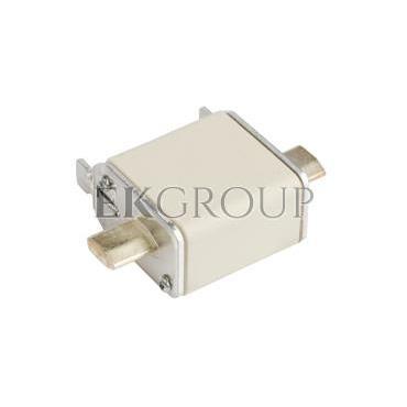 Wkładka bezpiecznikowa NH00 40A gF 500V WT-00 004114335-95759