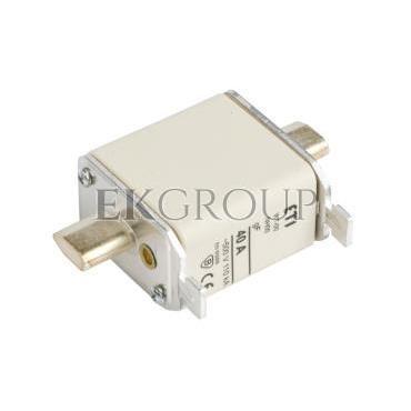 Wkładka bezpiecznikowa NH00 40A gF 500V WT-00 004114335-95760