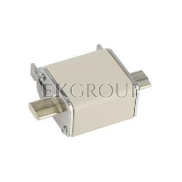Wkładka bezpiecznikowa NH00 80A gF 500V WT-00 004114338-95763