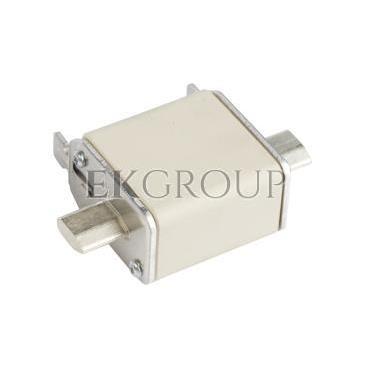 Wkładka bezpiecznikowa NH00 100A gF 500V WT-00 004114339-95765