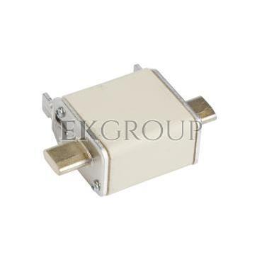 Wkładka bezpiecznikowa NH00 25A gF 500V WT-00 004114333-95769