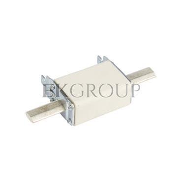 Wkładka bezpiecznikowa NH1C 125A gG 500V WT-1C 004113235-95811