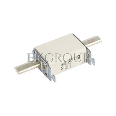 Wkładka bezpiecznikowa NH1C 125A gG 500V WT-1C 004113235-95812