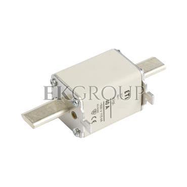 Wkładka bezpiecznikowa NH1 40A gG 500V WT-1 004113241-95819