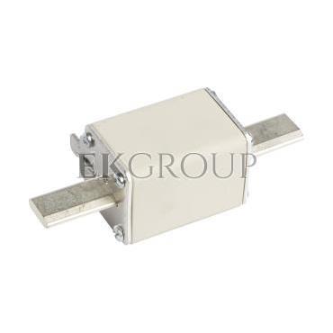 Wkładka bezpiecznikowa NH1 125A gG 500V WT-1 004113246-95828