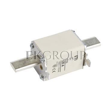 Wkładka bezpiecznikowa NH1 125A gG 500V WT-1 004113246-95829