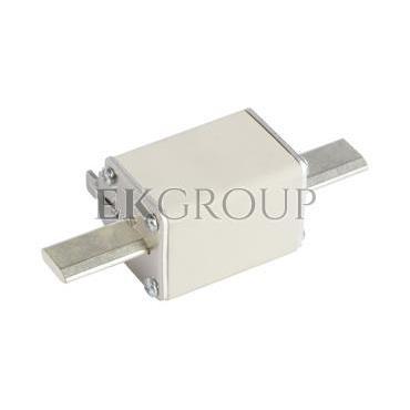 Wkładka bezpiecznikowa NH1 250A gG 500V WT-1 004113249-95834