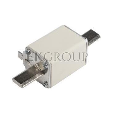 Wkładka bezpiecznikowa NH1 100A gF 500V WT-1 004139117-95846