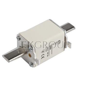 Wkładka bezpiecznikowa NH1 100A gF 500V WT-1 004139117-95847