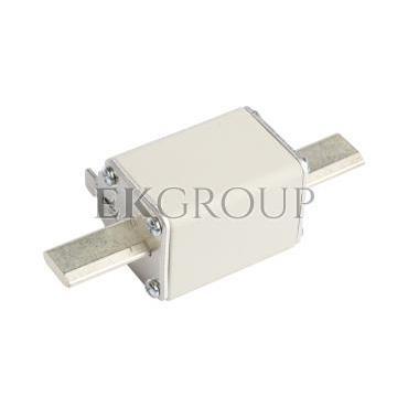 Wkładka bezpiecznikowa NH1 160A gF 500V WT-1 004139119-95850